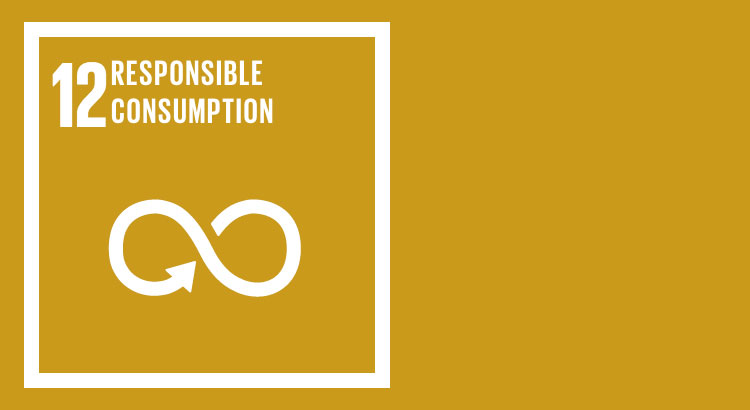 SDG 12 - Ensure sustainable consumption and production