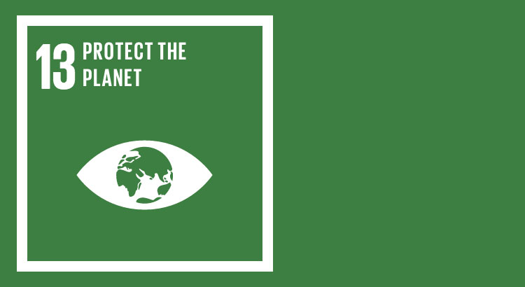 SDG 13 - Fight Climate Change and Its Effects