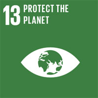 SDG 13 – Fight Climate Change and Its Effects